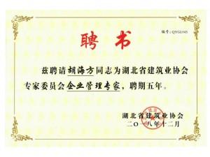 湖北省建筑业协会专家委员会企业管理专家